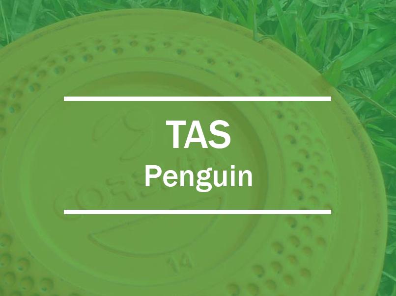 tas penguin