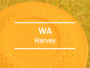 wa harvey