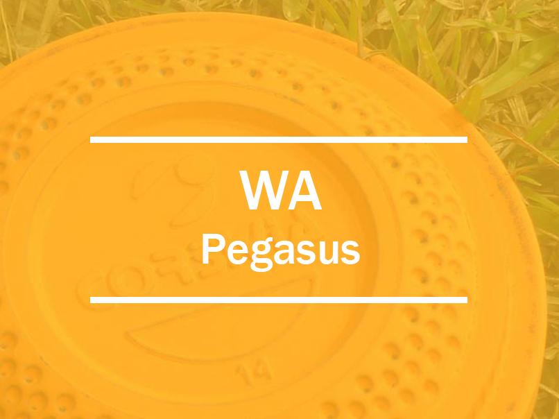 wa pegasus